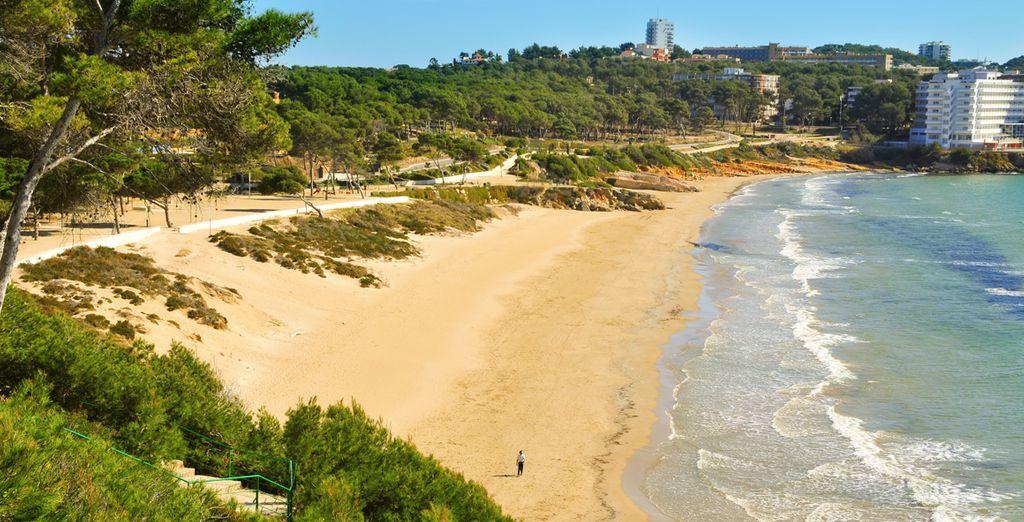 con le sue dorate spiagge, sarà una vacanza indimenticabile