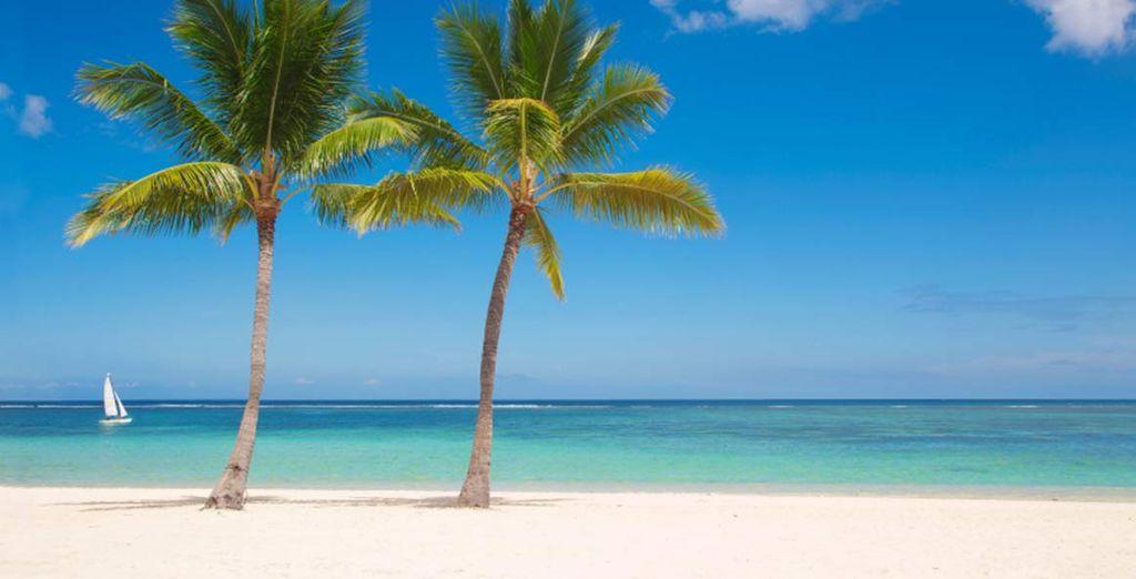 Per vivere una vacanza perfetta.