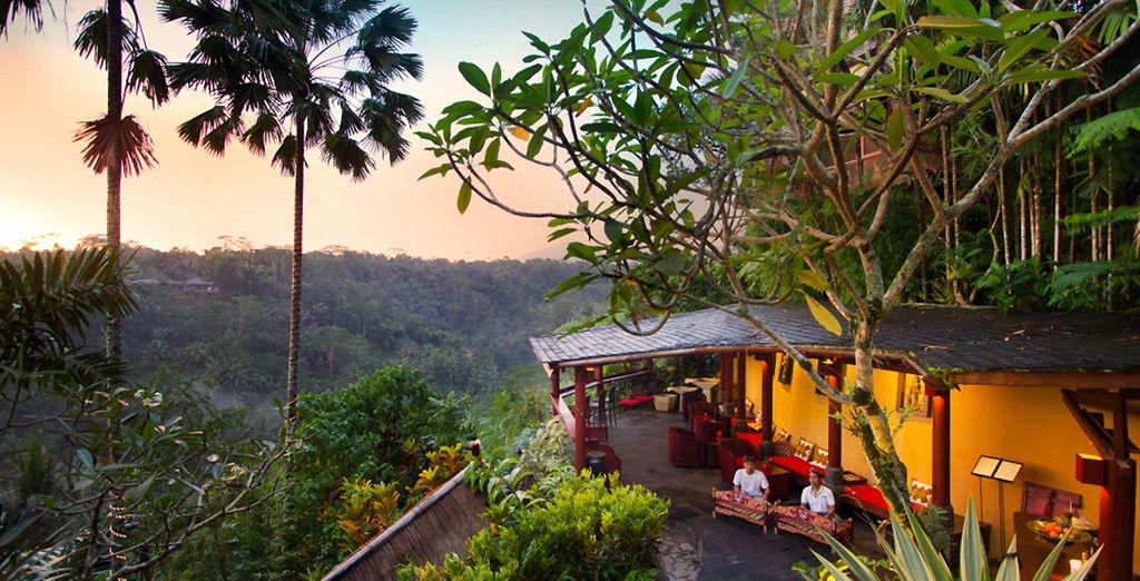 Qui vi attende il Jungle Retreat Ubud, uno splendido boutique hotel