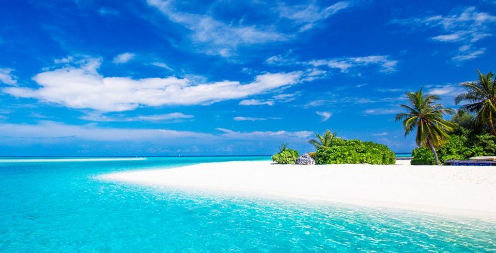 Spiagge idilliache vi aspettano