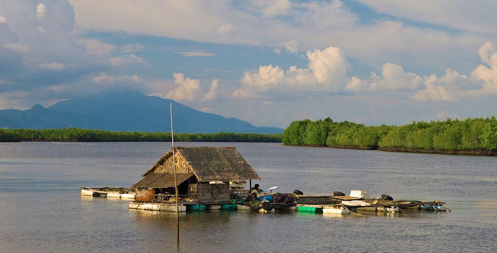 Koh Klang è circondata dal mare, canali di acqua salata e grandi distese di foreste di mangrovie incontaminate