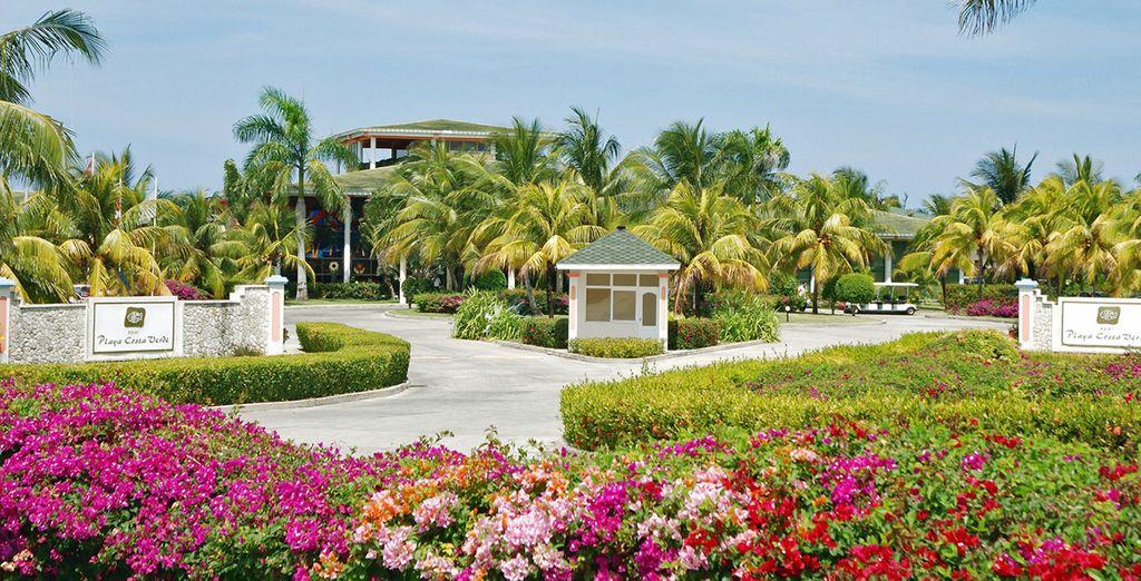 Spazi verdi e ambiente curato cartatterizzano questo resort