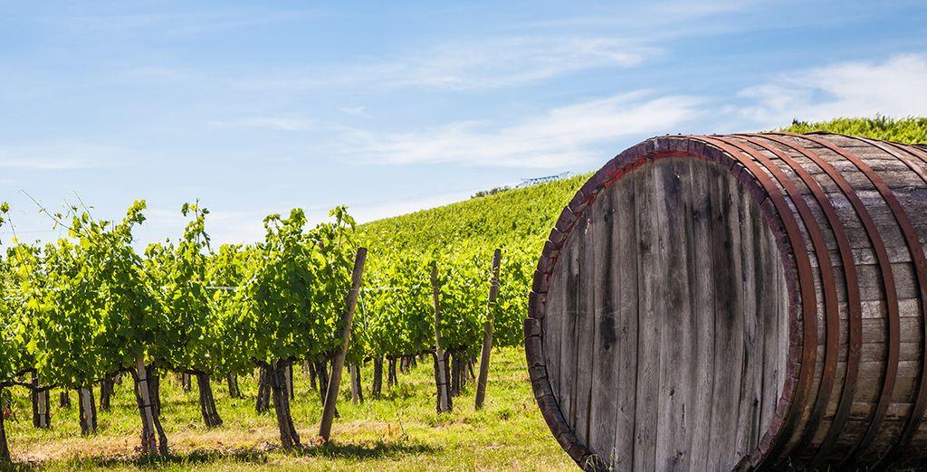 Toscana, vuol dire natura, buon vino e buon cibo