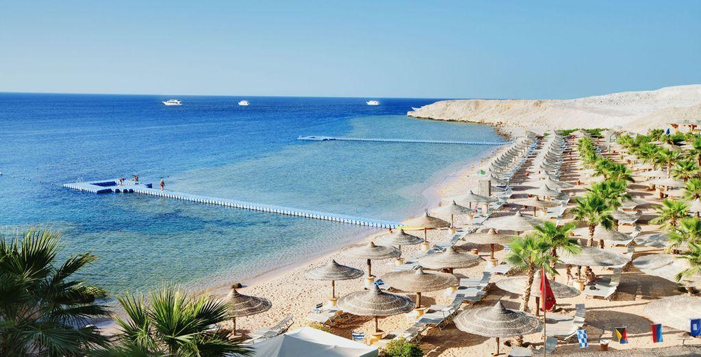 La vostra vacanza a Sharm vi aspetta!