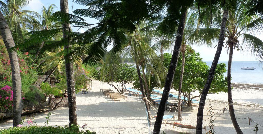 Concedetevi momenti in totale tranquillità all'ombra delle palme