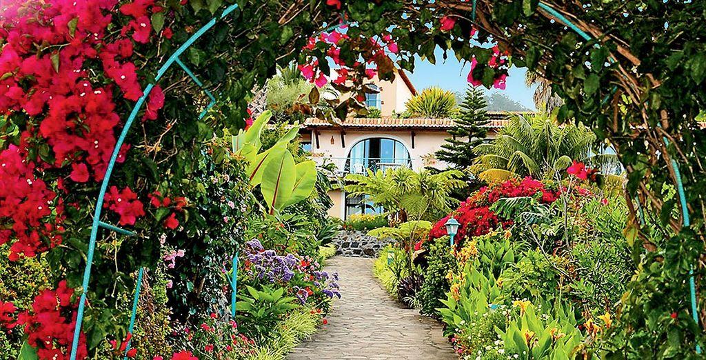 Passeggiate in un enorme giardino botanico