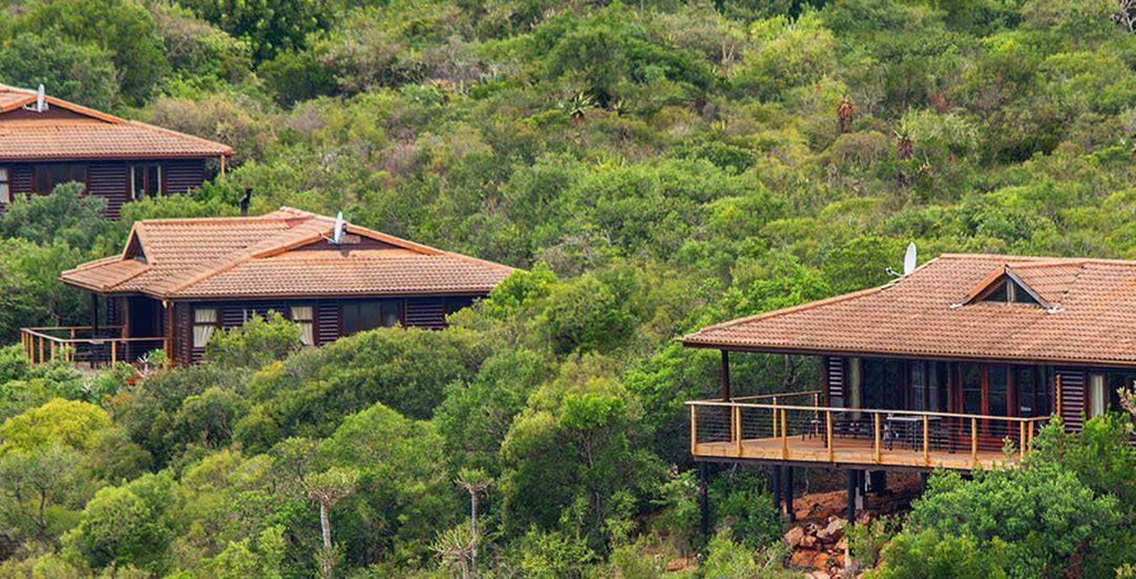 Soggiornerete presso Kariega Main Lodge o similare