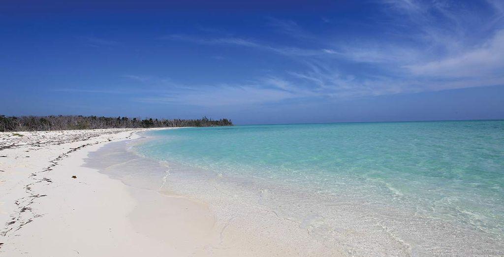 Spiagge infinite e orizzonti magici: vi aspetta una vacanza indimenticabile