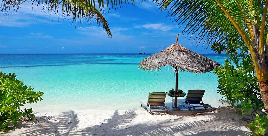 Trascorrerete un soggiorno meraviglioso su questa perla di sabbia bianca.