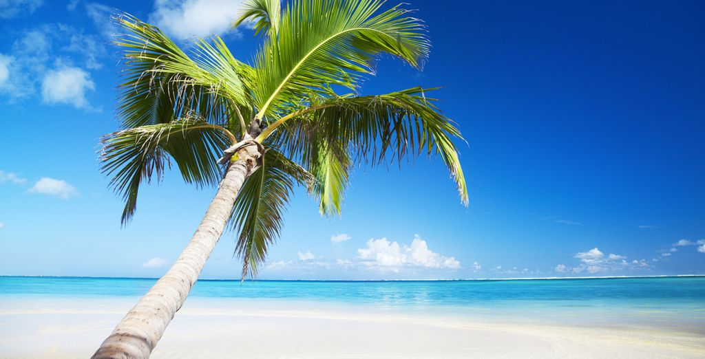 Spiagge, sole e relax: cosa aspettate? Punta Cana vi attende.