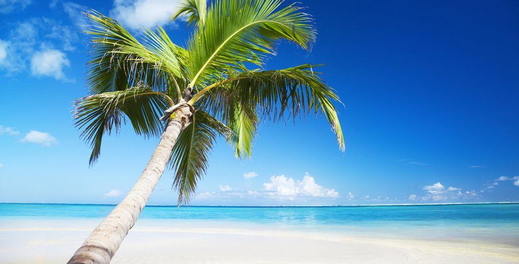 Una vacanza di relax e svago vi attende