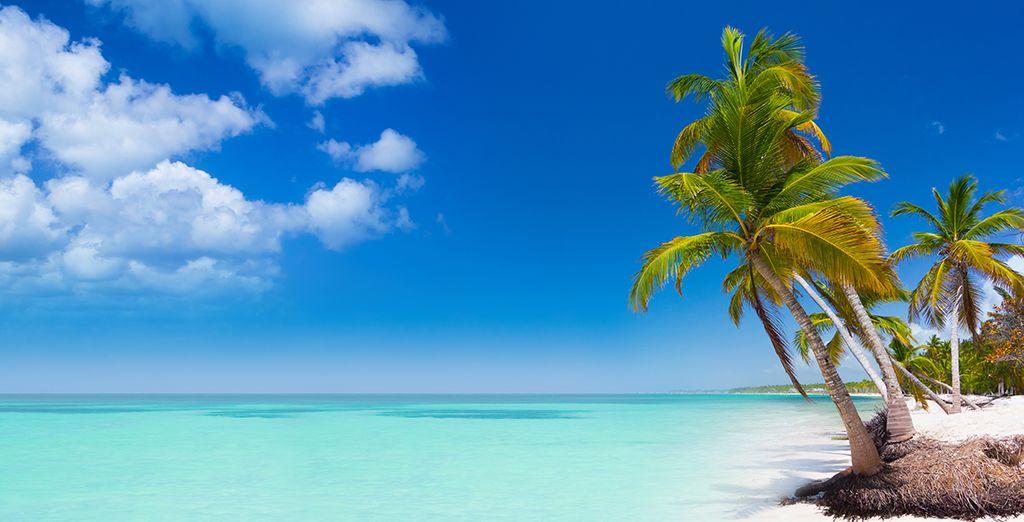 Punta Cana è un gioiello della natura