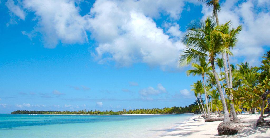Rilassatevi in questa oasi paradisiaca
