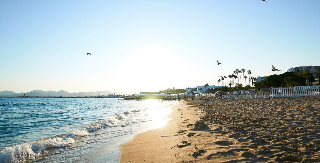 Fate una passeggiata romantica in riva al mare