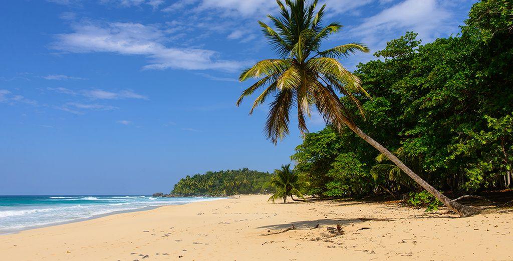 Fotografia delle spiagge di sabbia fine e di Punta Cana nella Repubblica Dominicana