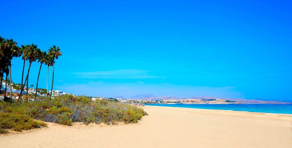 R2 Pajara Beach 4*