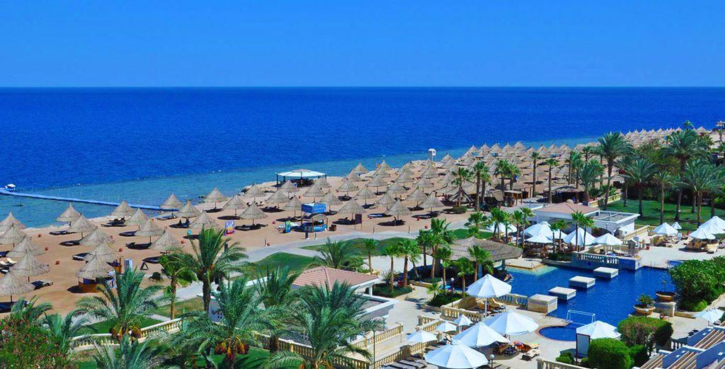 Sheraton Sharm Hotel Resort Villas & Spa 5*