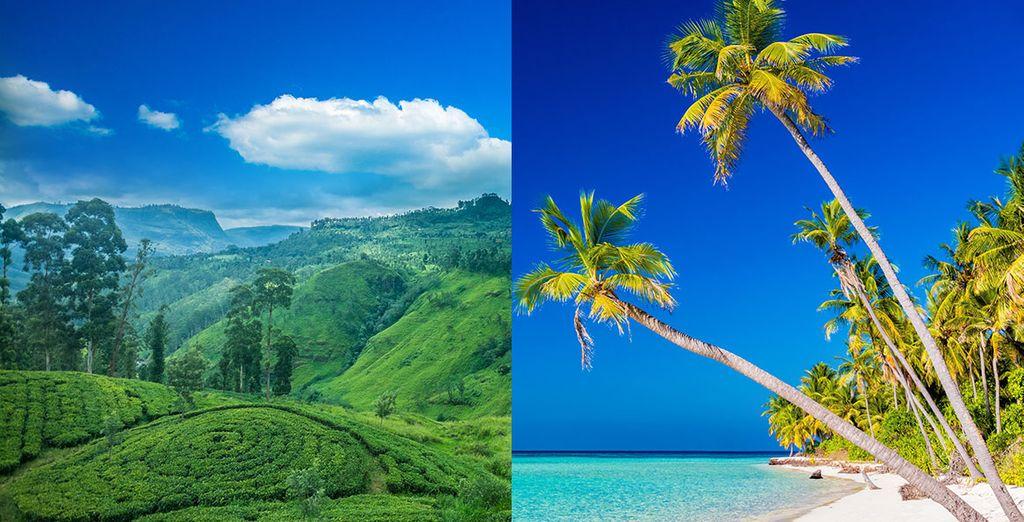 Tour Sri Lanka e soggiorno mare alle Maldive Adaaran Select ...