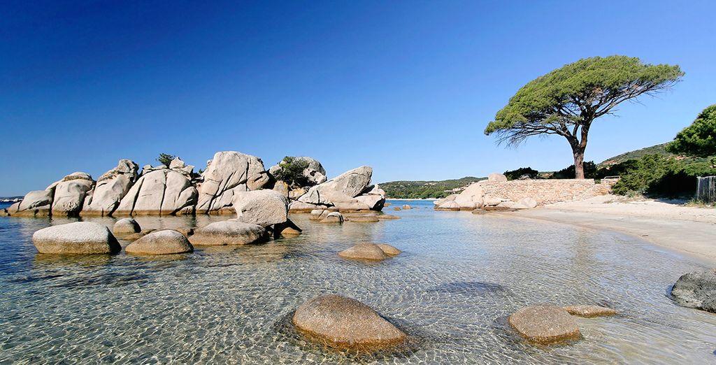 La Corsica vi attende!