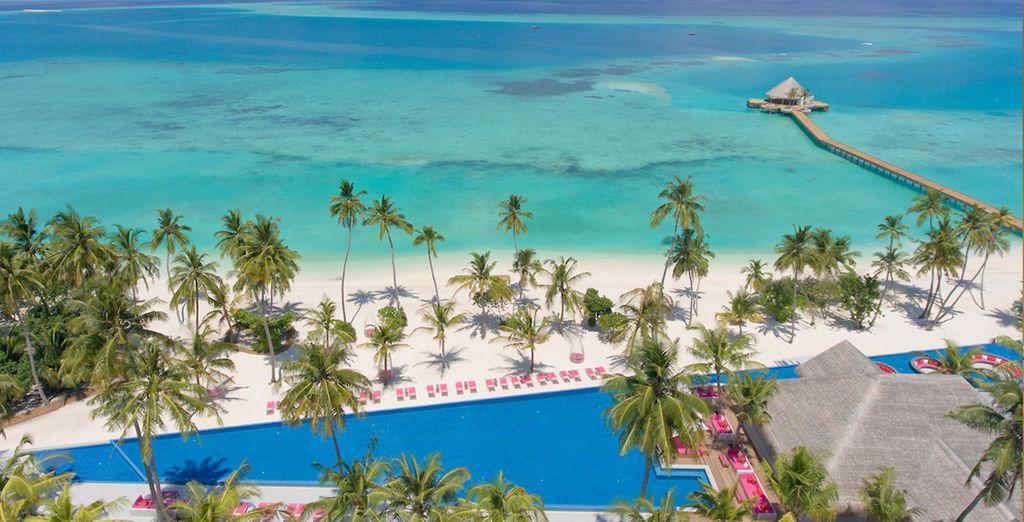Il Kandima Maldives 4* vi aspetta sull'Atollo di Dhaalu per regalarvi un'esperienza unica di vacanza