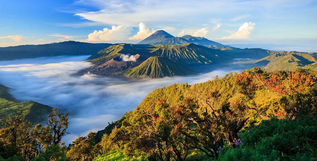 L'isola di Bali vi attende con le sue meraviglie