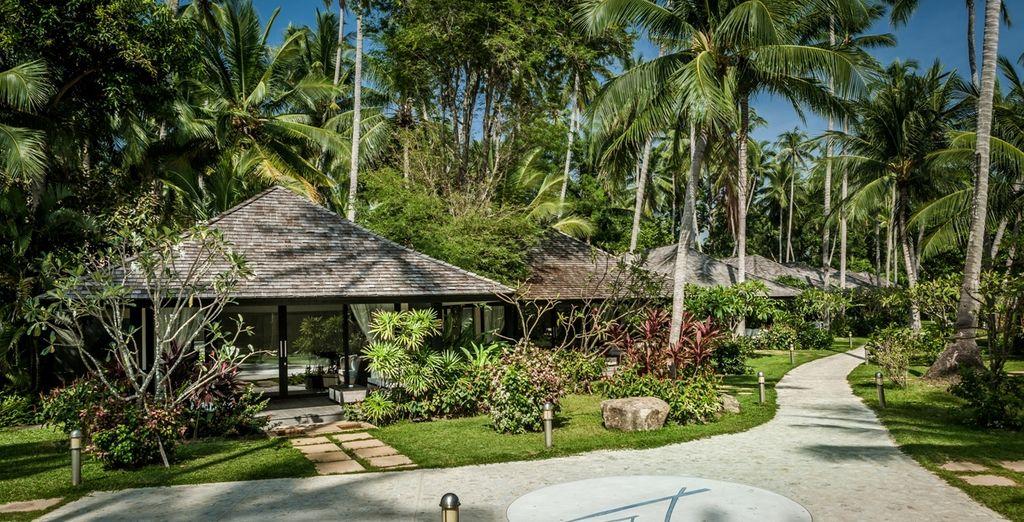 Wat u ook kiest het 5* Nikki Beach Resort in Koh Samui wacht op u