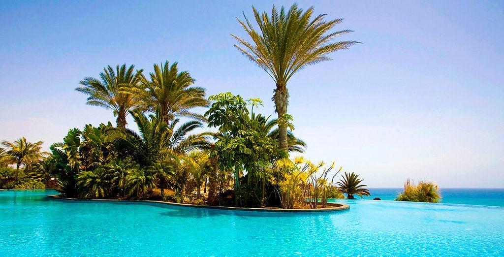 Welkom bij Pajara Beach, waar de tinten blauw zich mengen