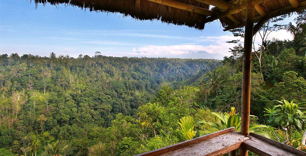 Zo kunt u het prachtige landschap van Ubud bewonderen vanaf uw balkon