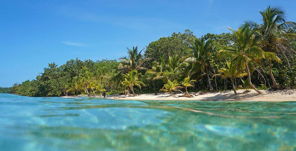 En het turquoise water van de Stille Oceaan