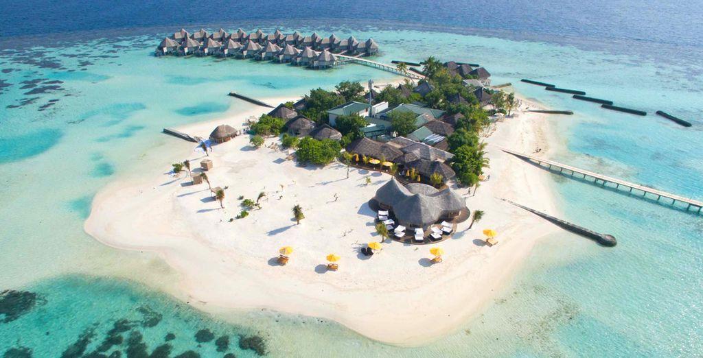 Op zoek naar een paradijselijke vakantie?