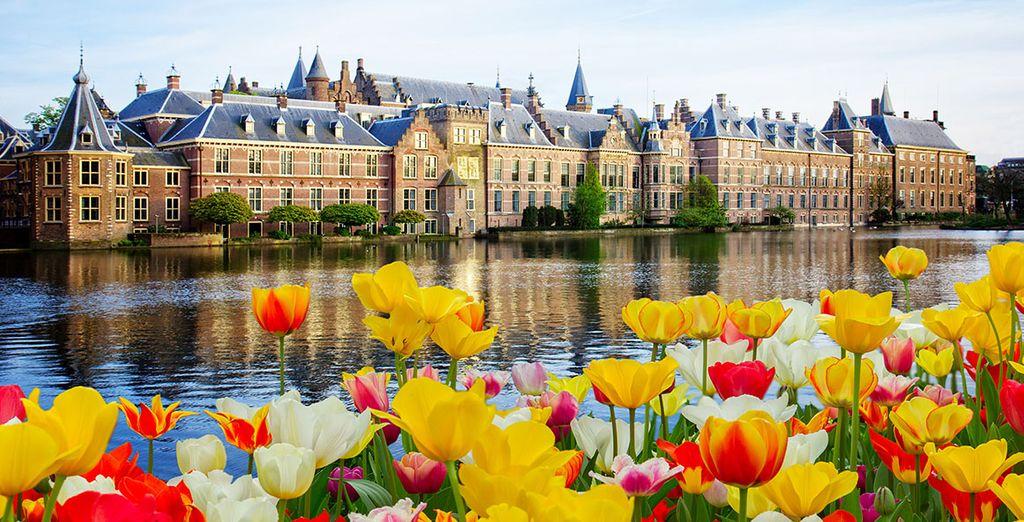 Op naar Den Haag!