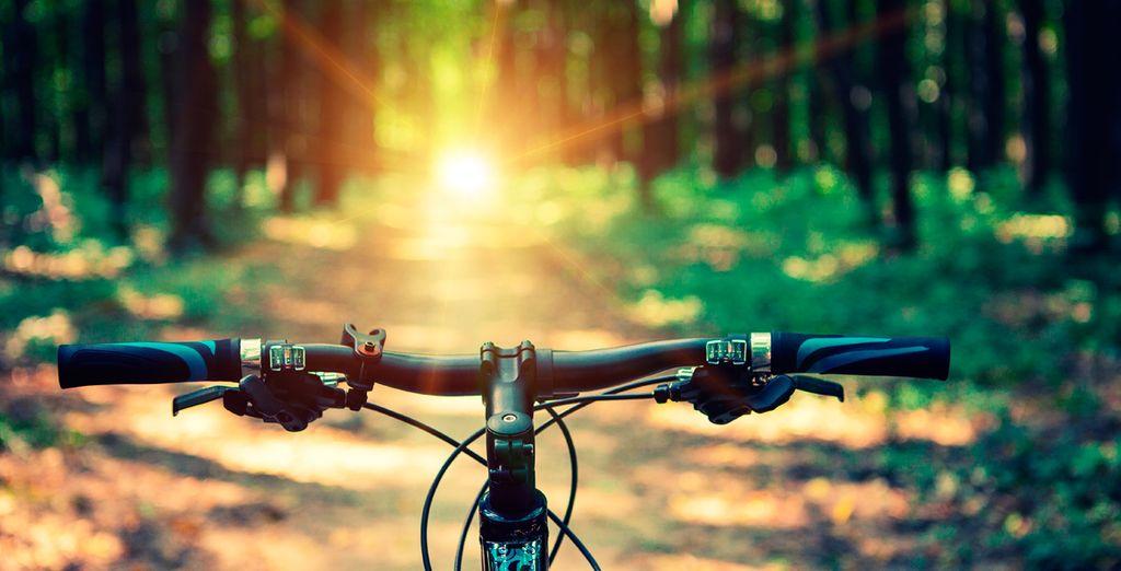 Of huur een mountainbike en verken de weelderige natuur van het eiland