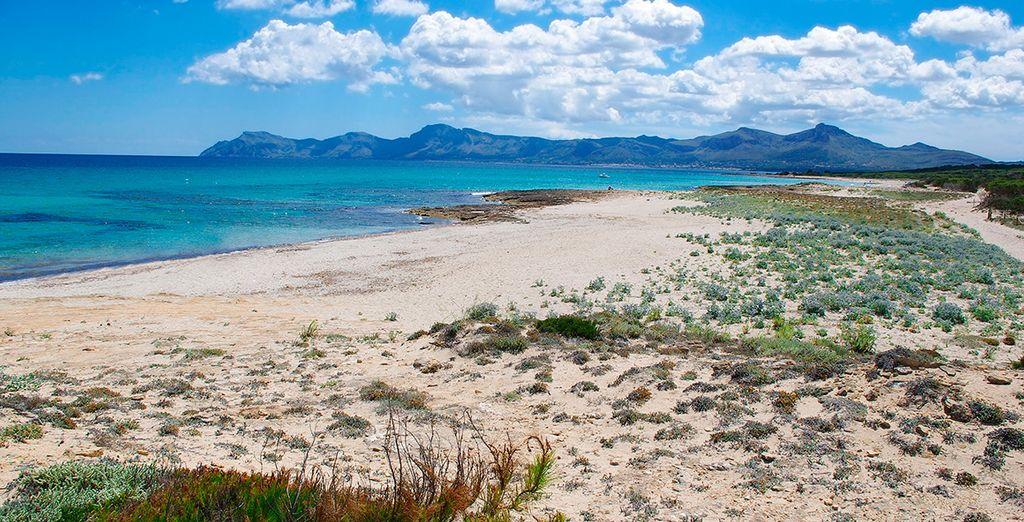 Rustige stranden om heerlijk te ontspannen
