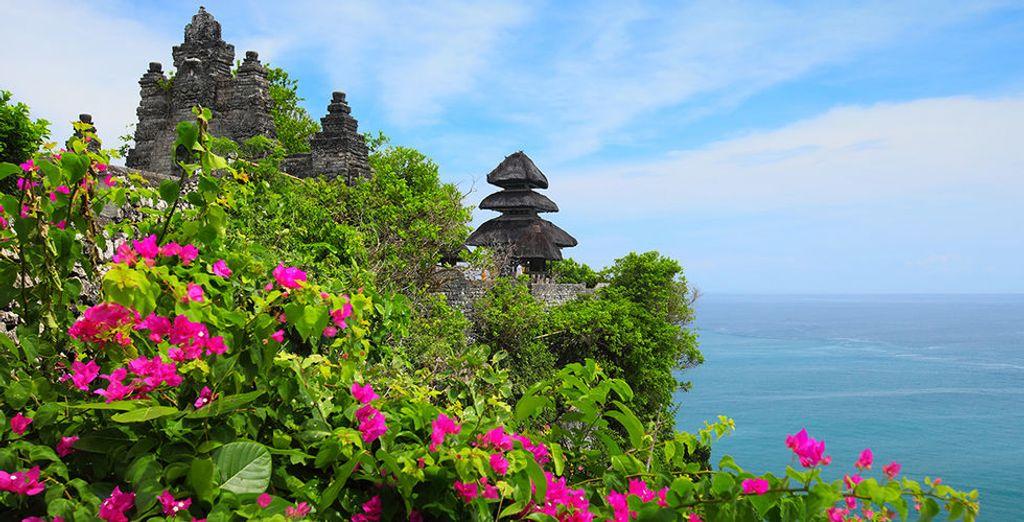 Ontdek Bali!