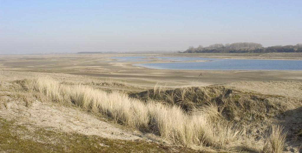 De omgeving van Zeebrugge is perfect om de  dagelijkse stress achter u te laten