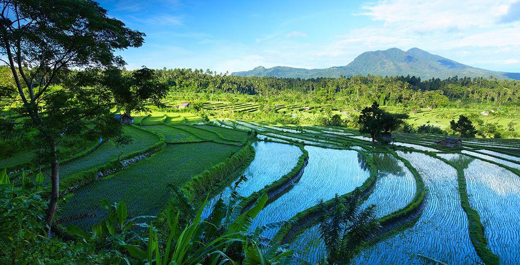 Maar ook met prachtige uitzichten en eindeloze rijstvelden