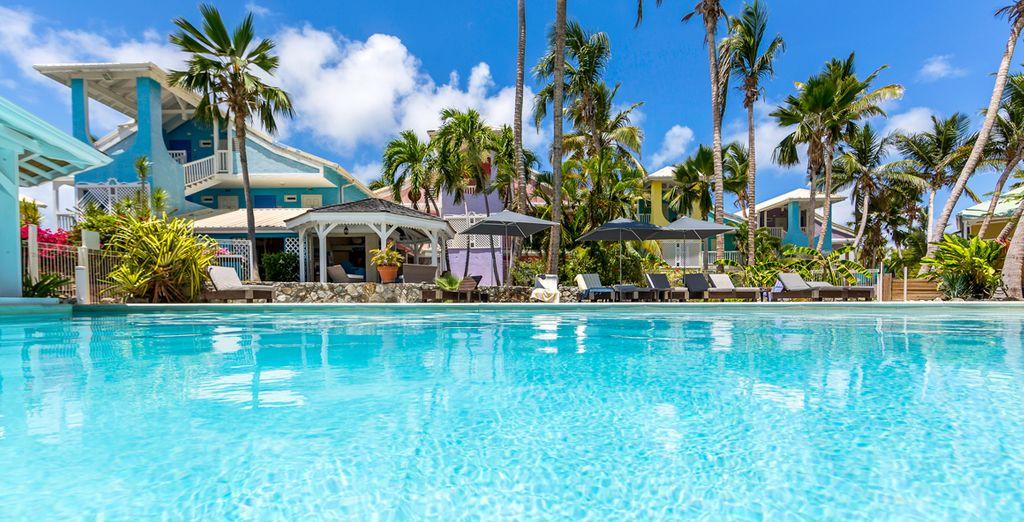 Welkom op het paradijselijke eiland Sint-Maarten