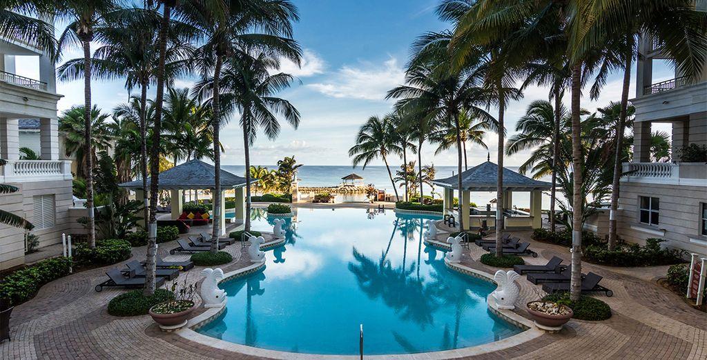 Welkom in dit Jamaicaanse paradijs