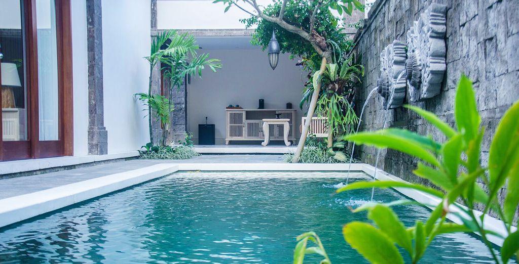 Een oase van rust in de jungle