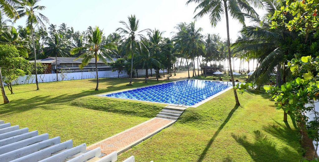 Waar u verblijft in het Taprobana Beach 4*