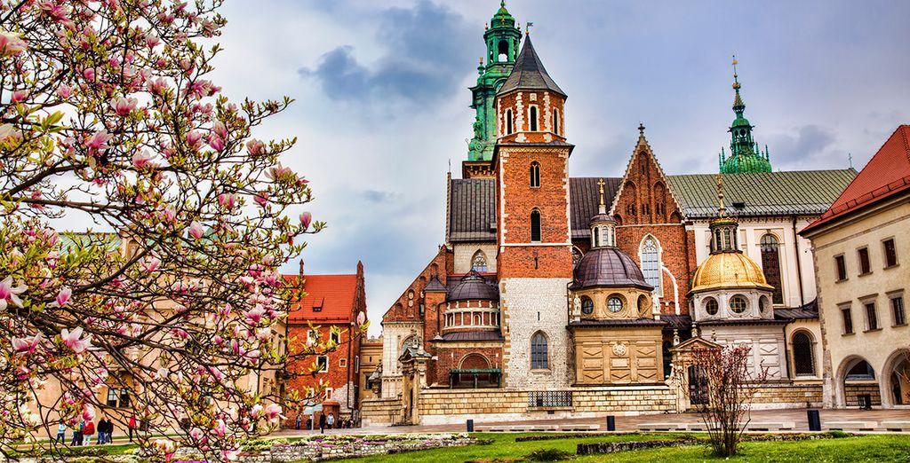Ontdek de geschiedenis, cultuur en architectuur van Krakau