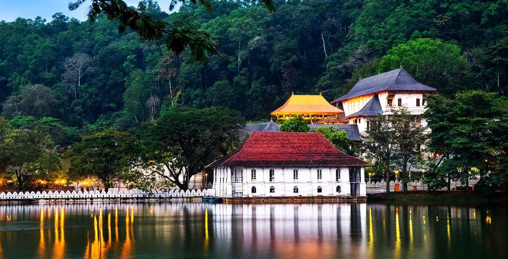 Daarna gaat het naar Kandy met de bekende Tempel van de Tand