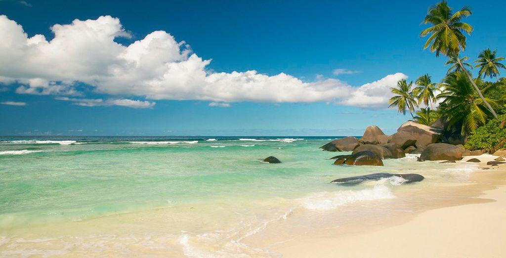 Bent u klaar voor een vakantie in het paradijs?