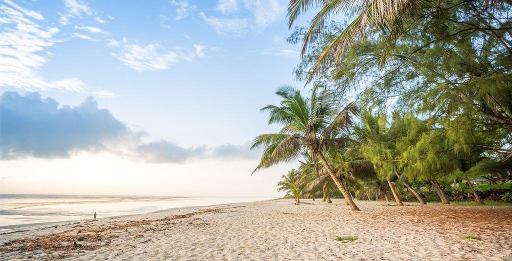 Om vervolgens op de zandstranden van Diani Beach te vertoeven