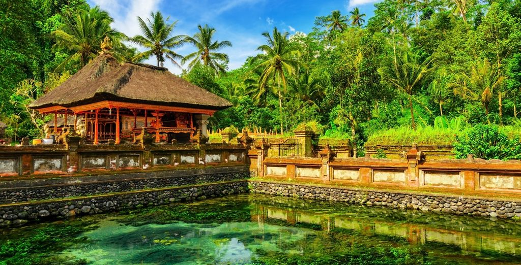 The lush and cultural area of Ubud .