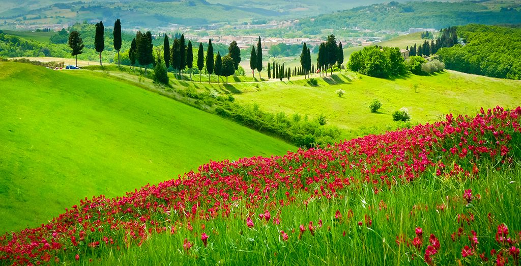 Discover the picture-postcard beauty of Tuscany