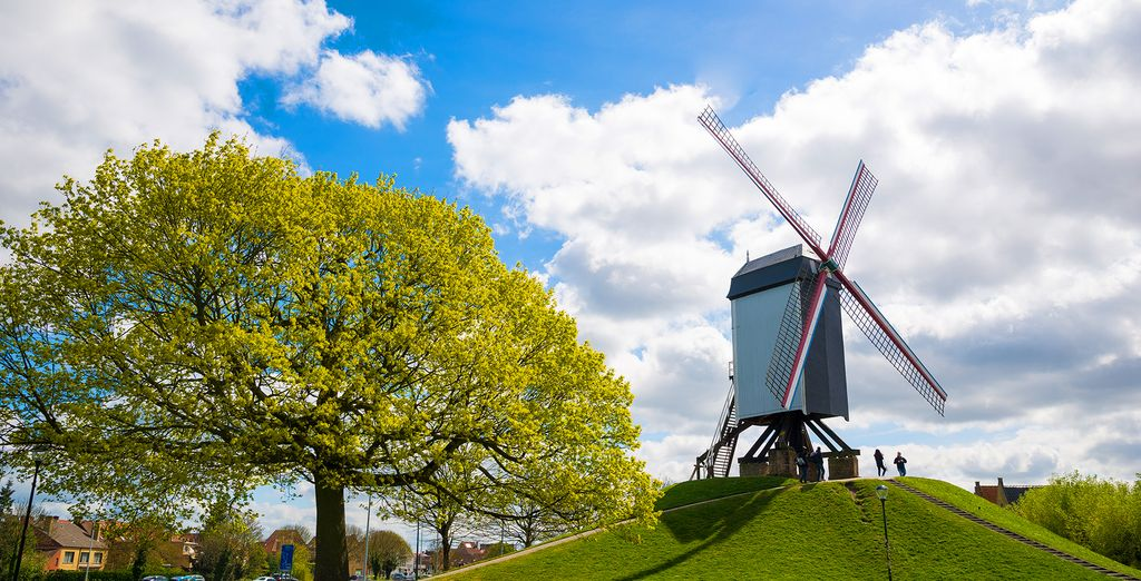 As Spring approaches, why not hire a bicycle for an invigorating day trip to see the Belgian windmills