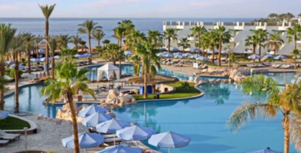 - Hilton Sharm Waterfalls***** - Sharm El Sheikh - Egypt Sharm El Sheikh