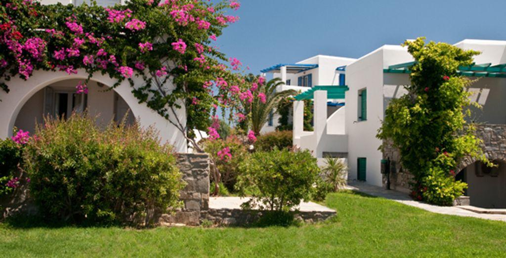 - Hotel Lady Anna & Hotel Poseidon**** - Mykonos &  Paros - Greece Mykonos & Paros