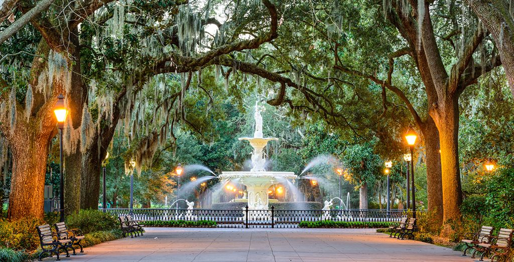 Make your way to the whimsical tree-lined streets of Savannah, Georgia